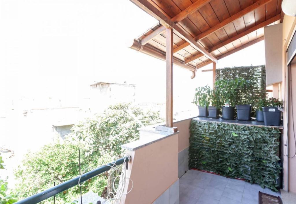 Casa Patakoni image3
