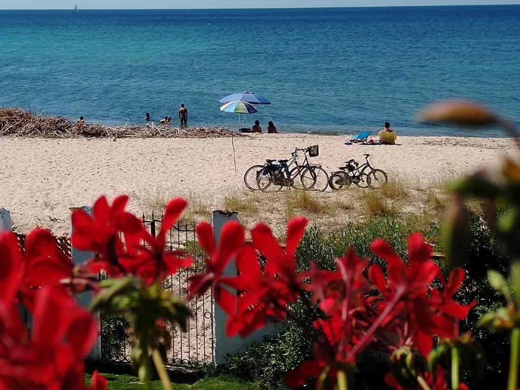La terrazza sul mare - Terrace by the sea image2