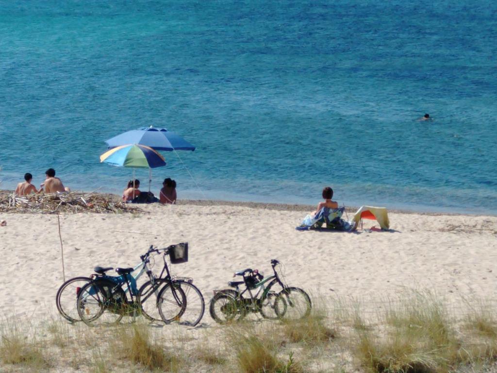 La terrazza sul mare - Terrace by the sea image7