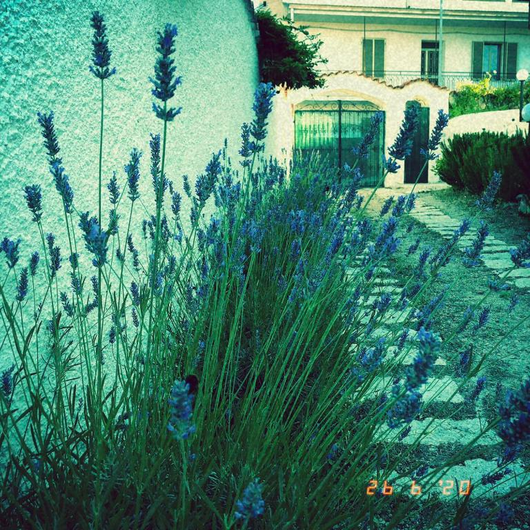Casa sui Tetti img6