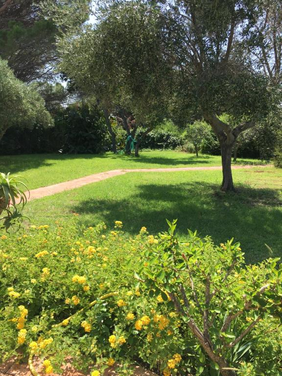 Villa Lorenza img22