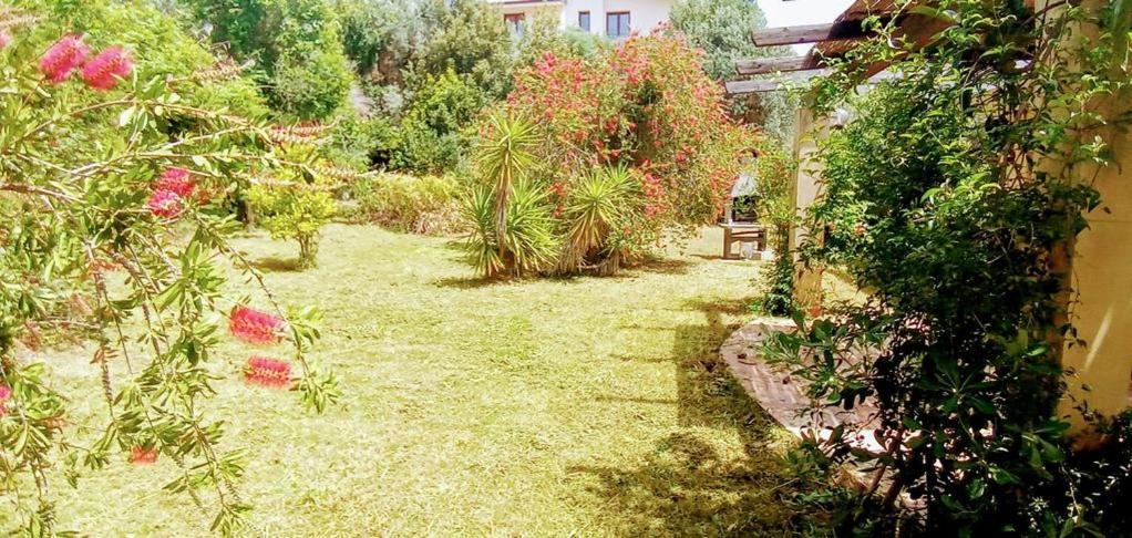 villa Gabriella image3
