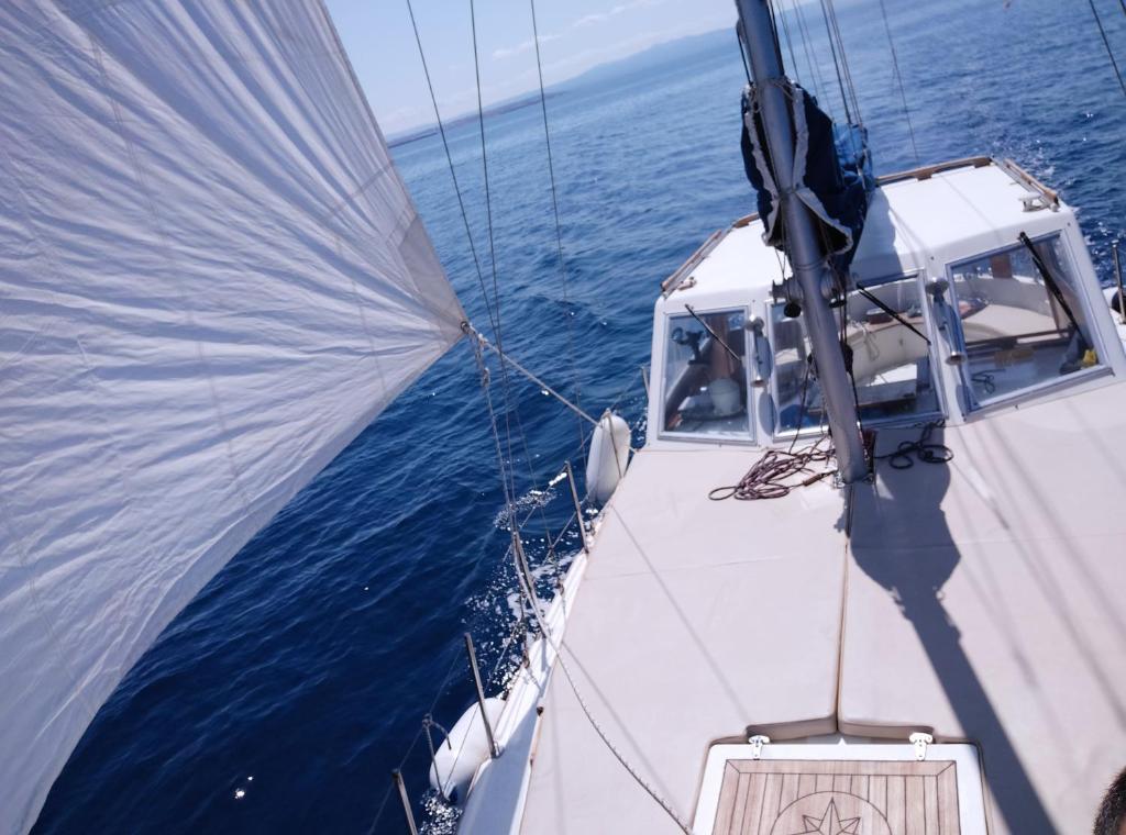 Kanaloa Charter Asinara bild3