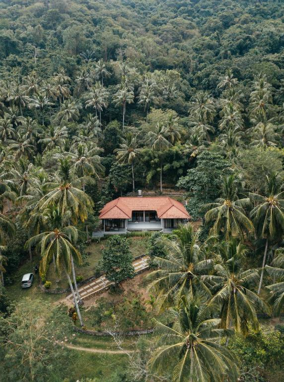 Kupu-kupu Villa Lombok