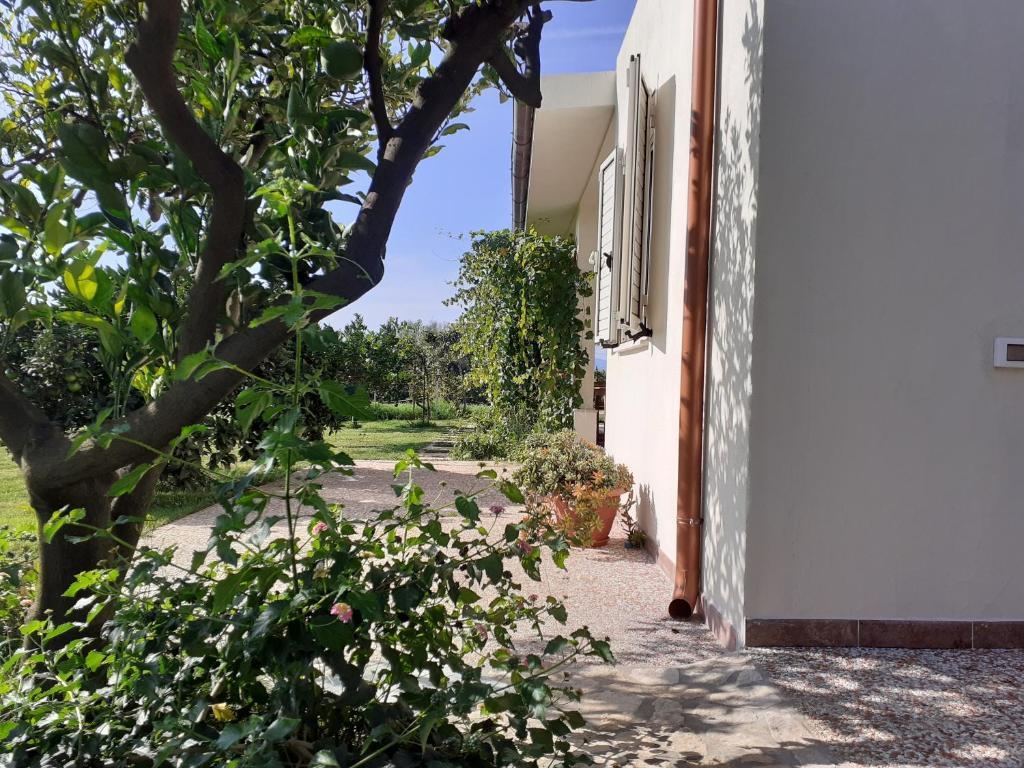 Villa Pusortu img9