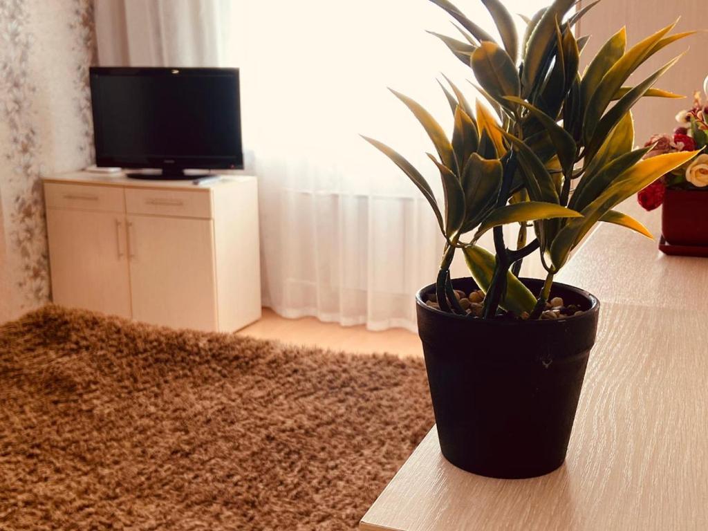 Apartment Sura Sport