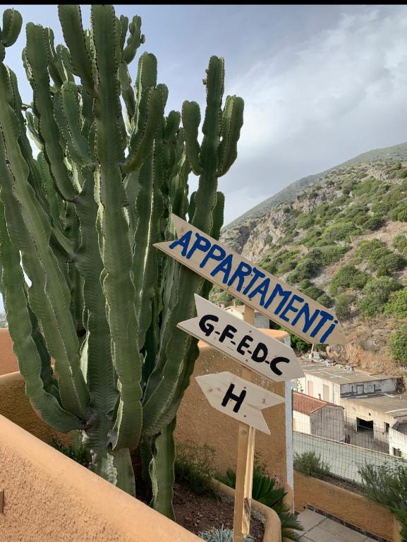 Appartamento P img7