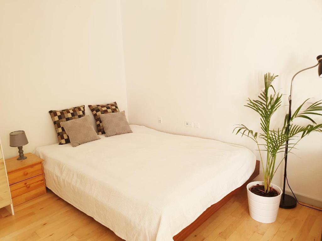 Charming and spacious apartment in Copenhagen
