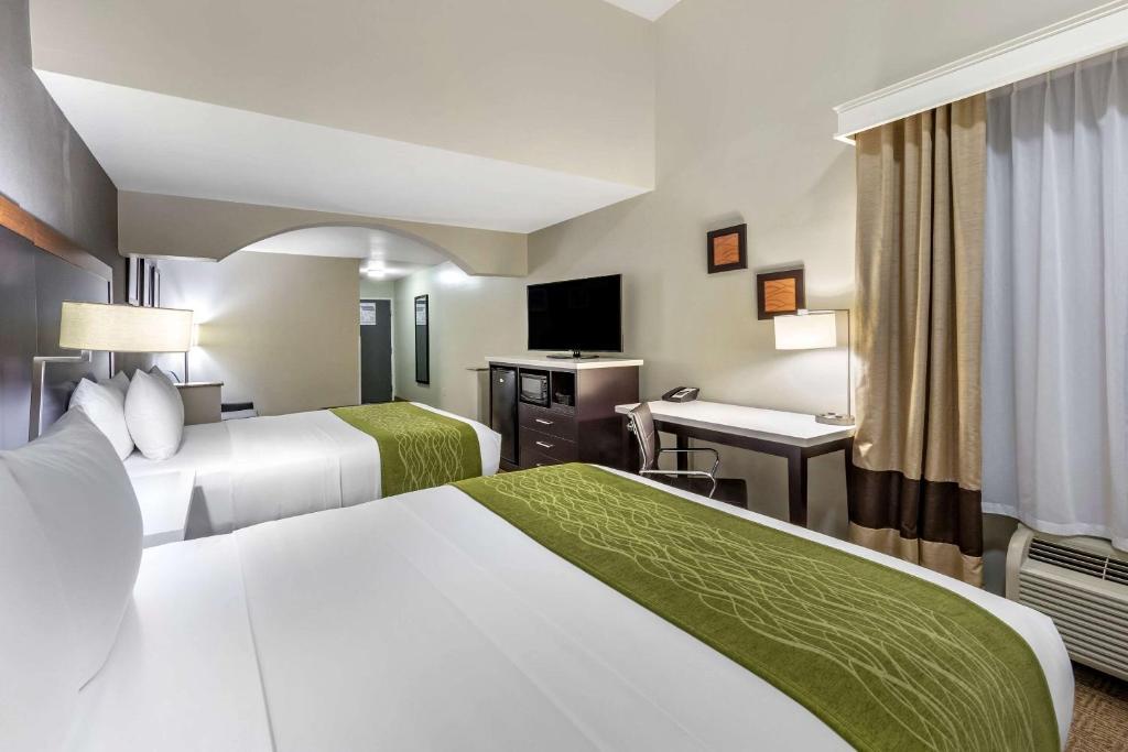 Comfort Inn® Hotels Accommodations
