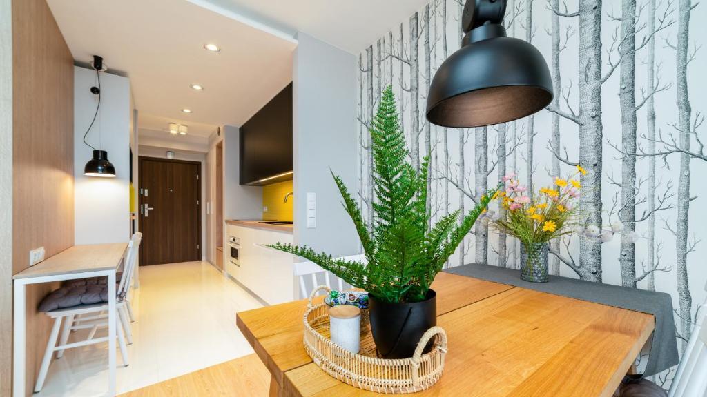 noclegi Karpacz Triventi Moutain Residence Apartament Sunrise