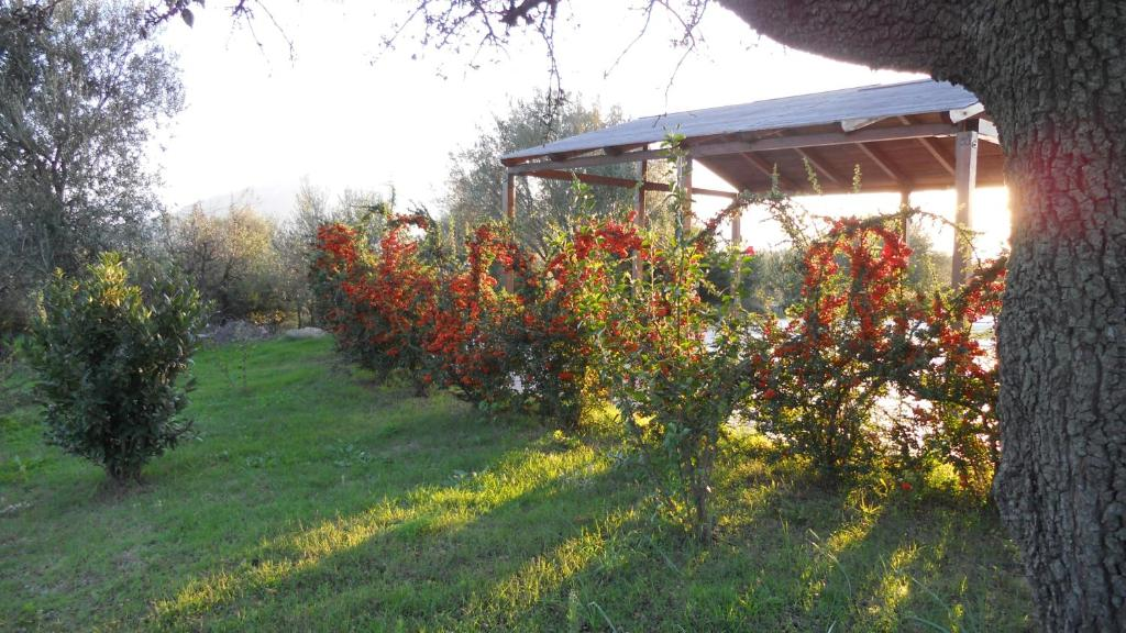 Maria Caderina Green Village img23