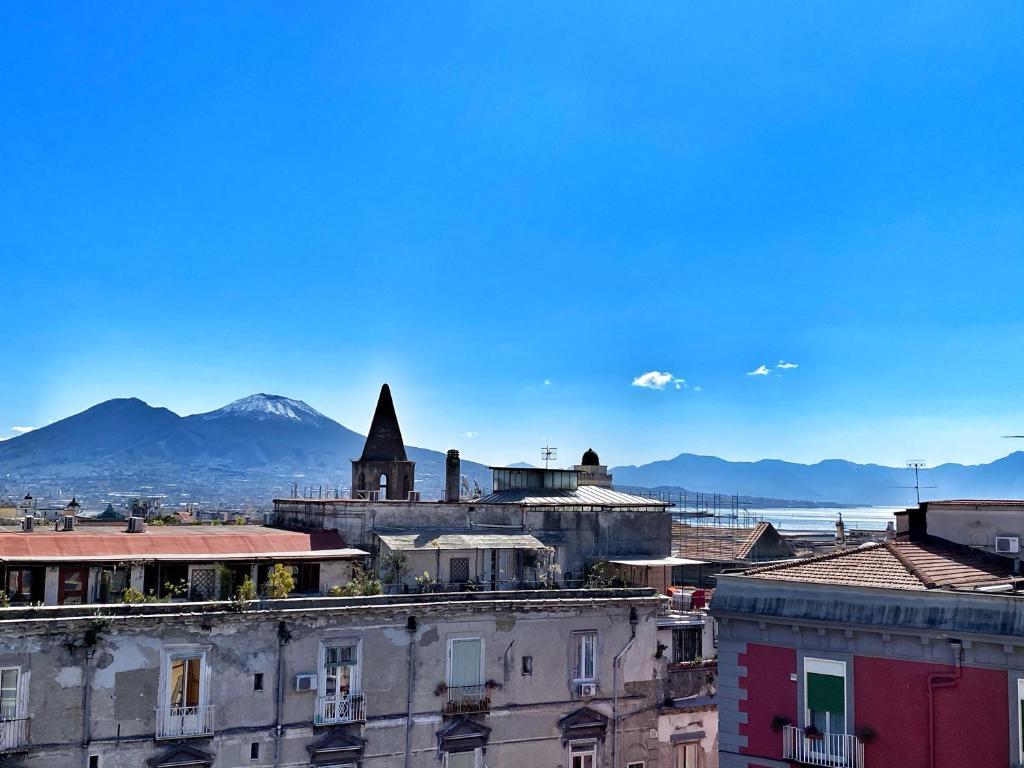 Bellini View
