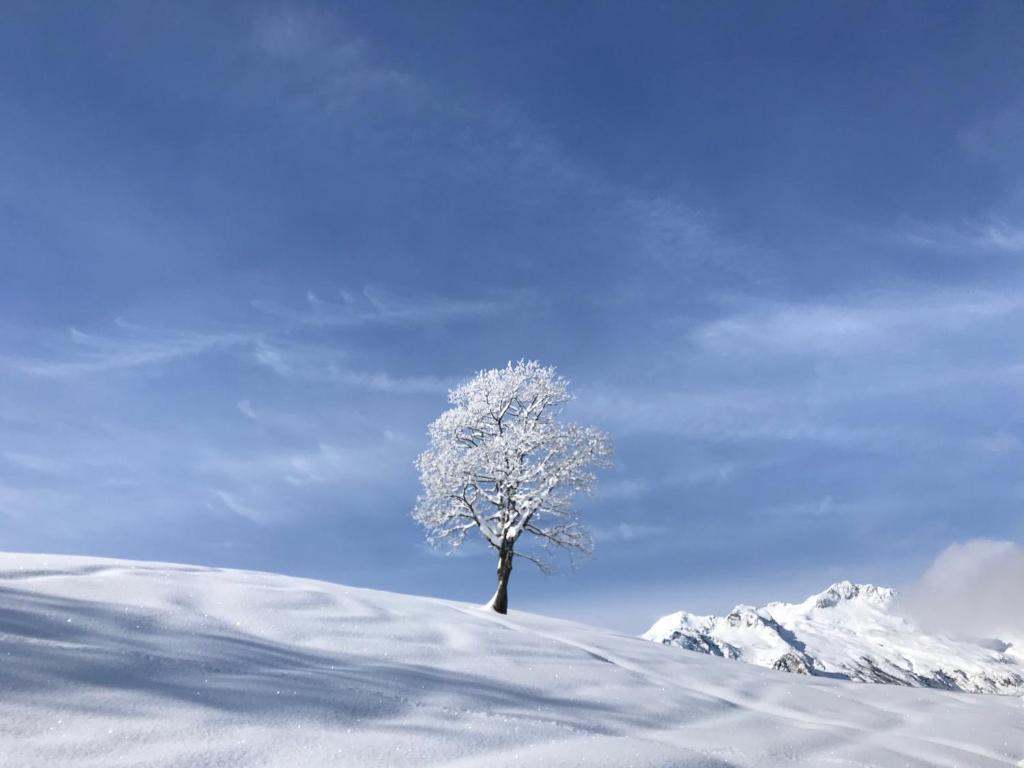 Le Mottet - ESF & Skis aux pieds