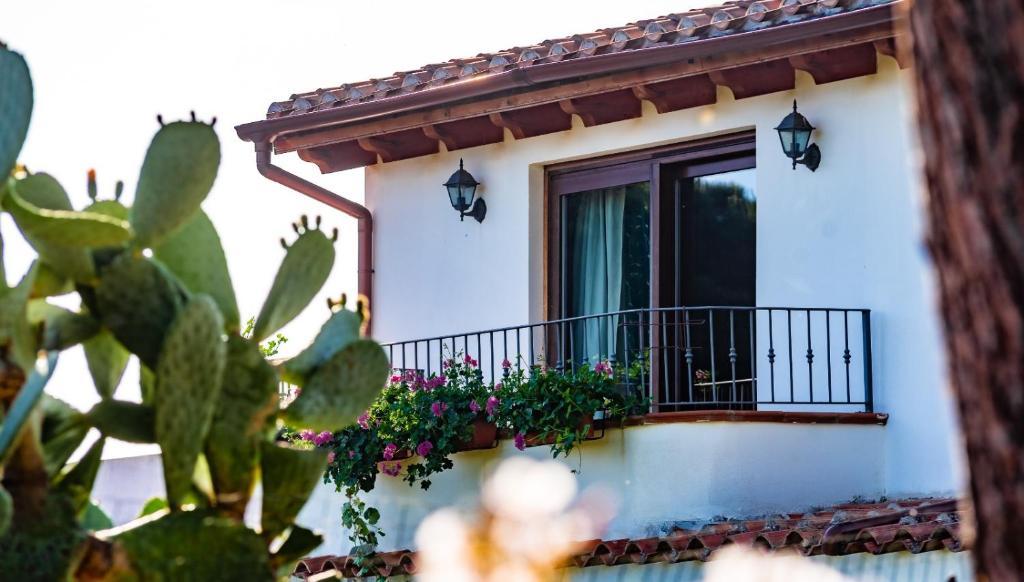 "Casa Vacanze "" IS MERIS "" image1"