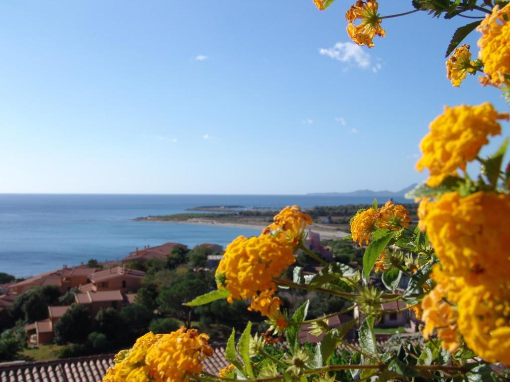 Le Residenze di Porto Corallo image3