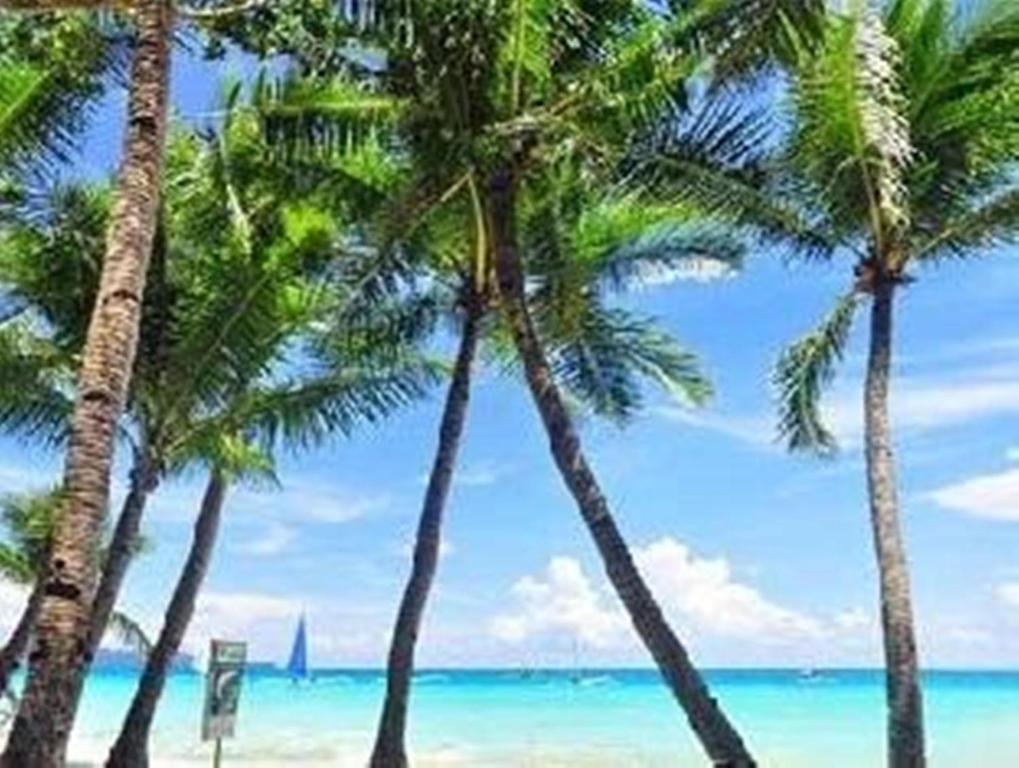 Boracay Coco Huts