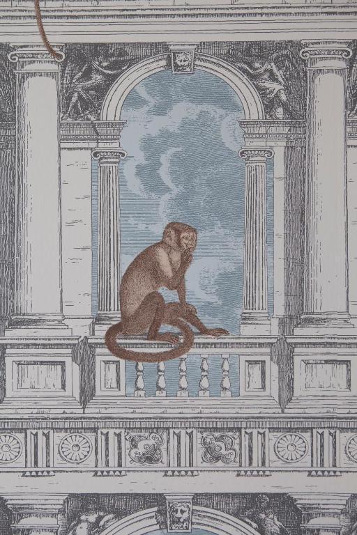 Ca' della Scimmia-The Welcomist in Venice