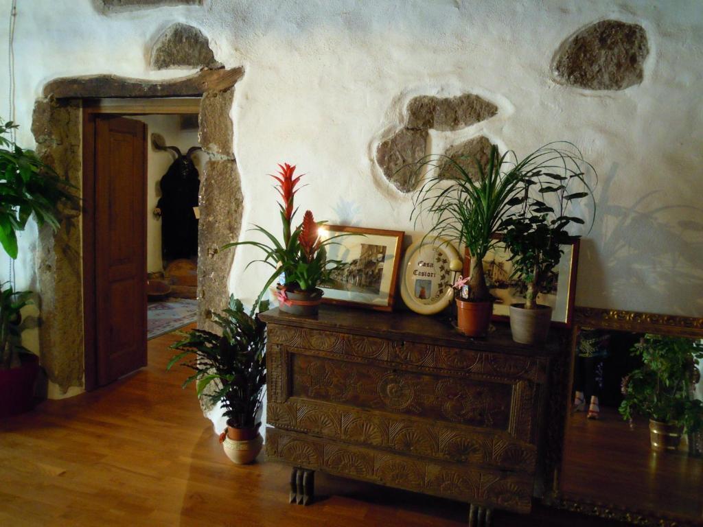 Casa Castori img5