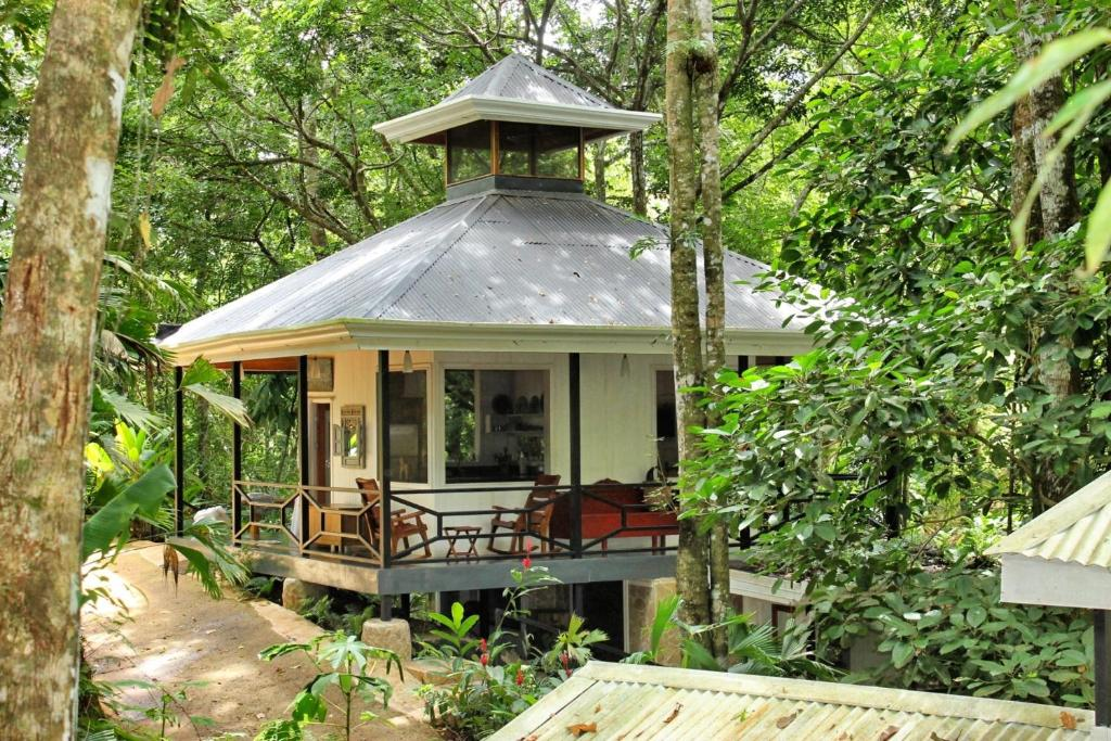 The Jungle House