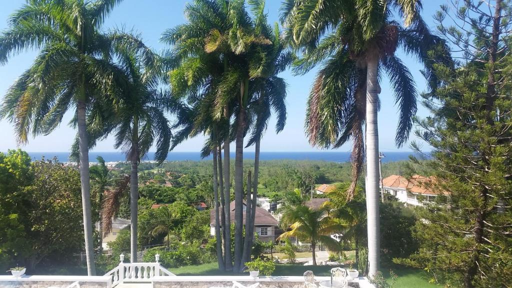 Hotels In Ironshore Jamaica Price From 52 Planet Of Hotels
