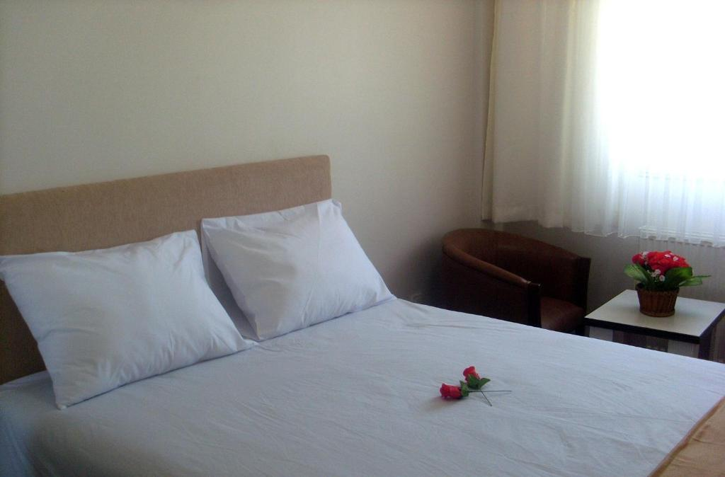 Single Room with Mountain View Butik Ertur Hotel
