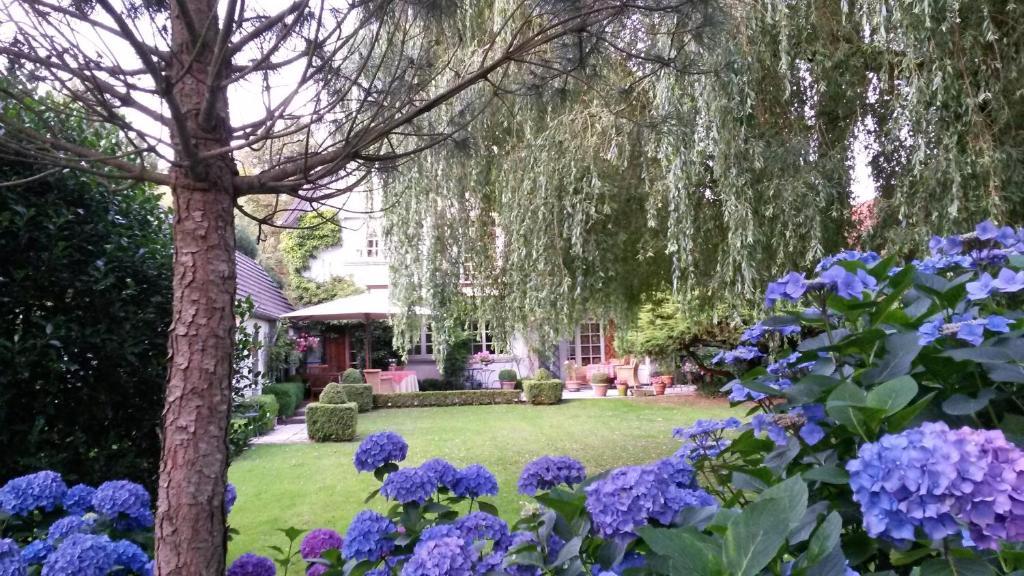 B&B Willow Lodge, 9840 De Pinte