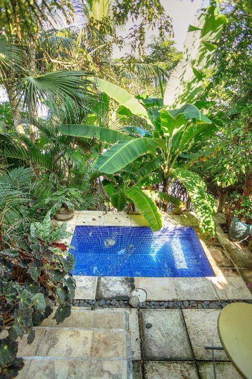 Double Room with Private Pool  Hotel SelvAzul