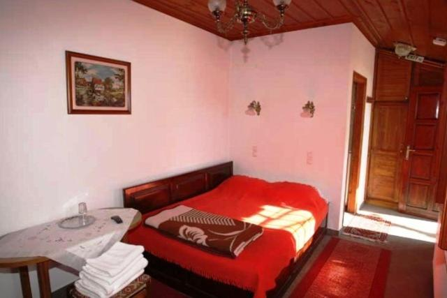 Double Room with Mountain View and Fireplace Papigo Astraka II