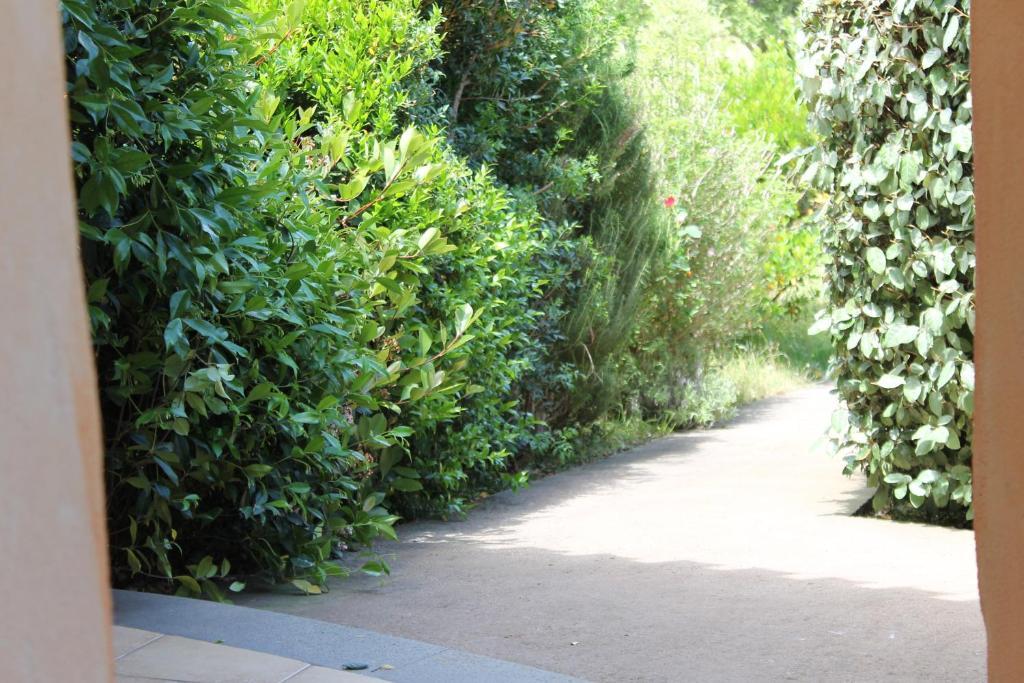 Maria Caderina Green Village img95