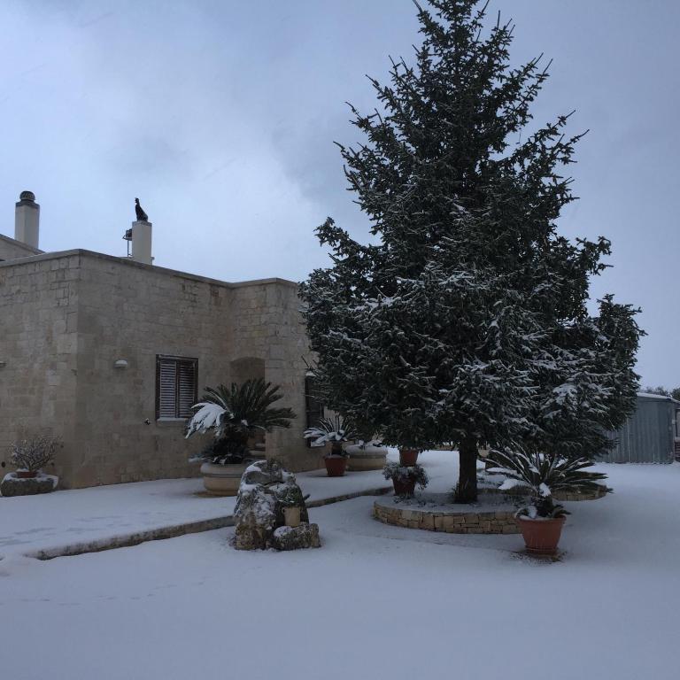 B B Villa Grassi Alberobello