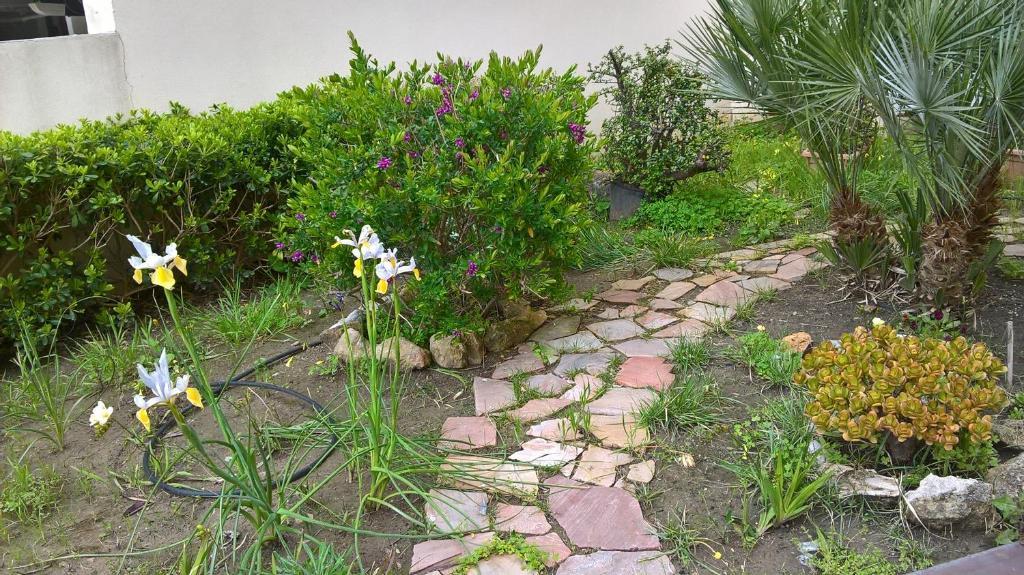 Appartamento Tulipano img11