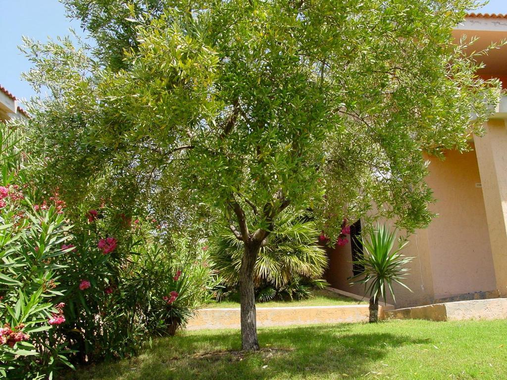 Posidonia Holiday Home image8