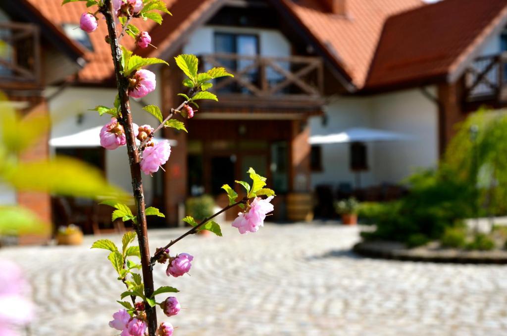 noclegi Pisz Villa Village