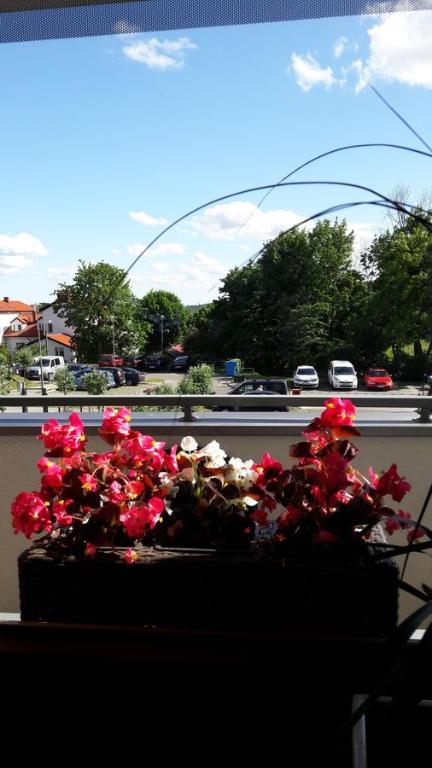 noclegi Gdańsk Apartament Gdańsk 15 min od starówki