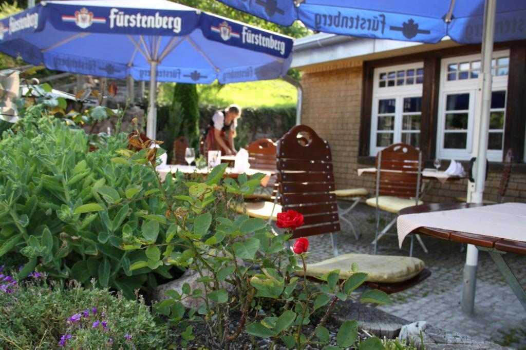 Black Forest Restaurant Nederland Menu