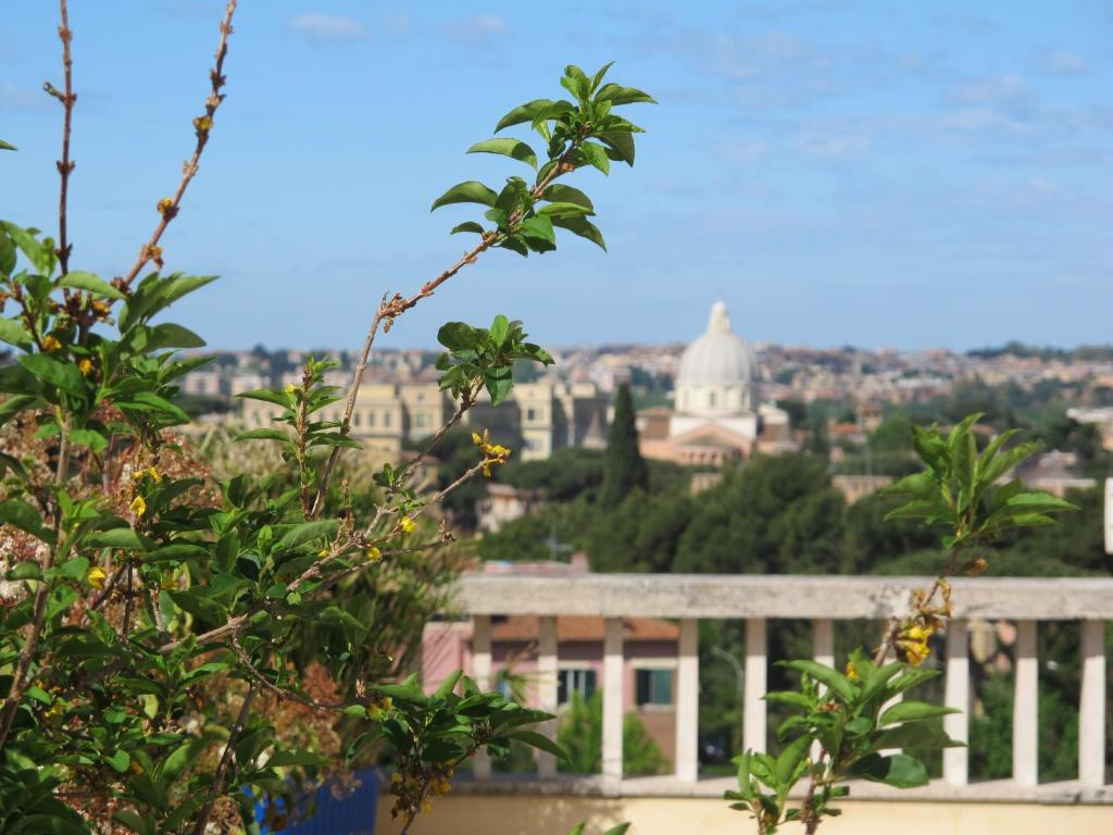 Terrazza Fiorita Rome 2018 Reviews Pictures Deals