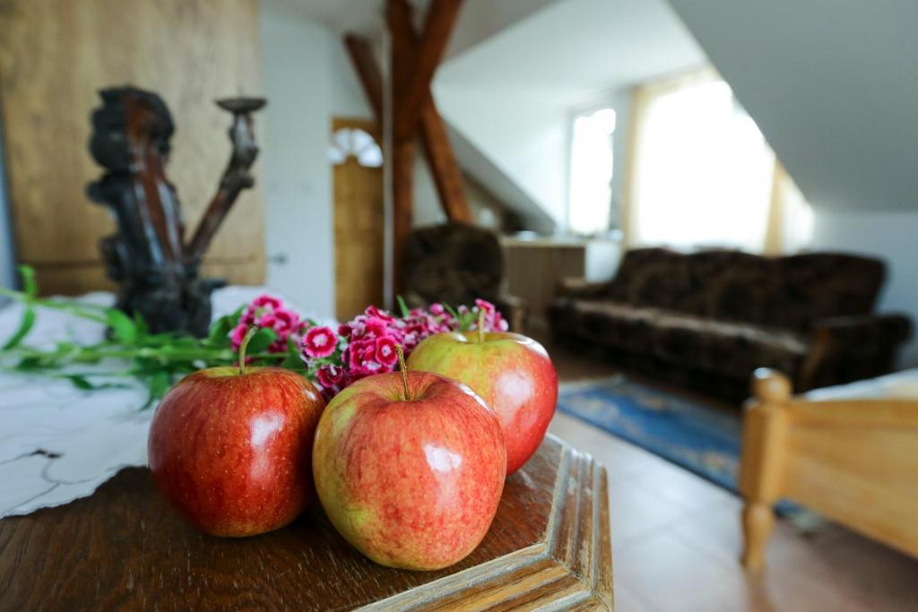 noclegi Stare Jabłonki Aktywna Agroturystyka