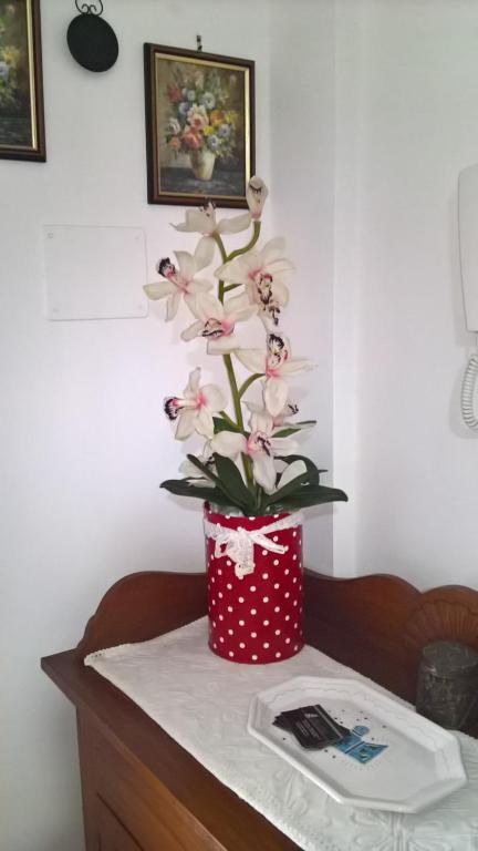 Appartamento Tulipano img7