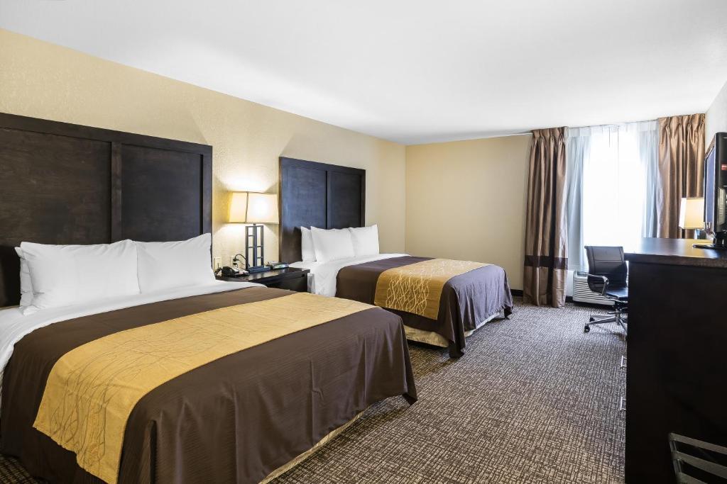 comfort inn suites allen park dearborn allen park. Black Bedroom Furniture Sets. Home Design Ideas