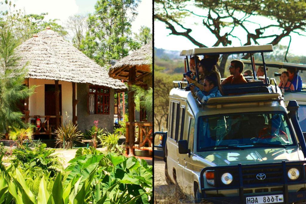 The Vijiji Center Lodge & Safari