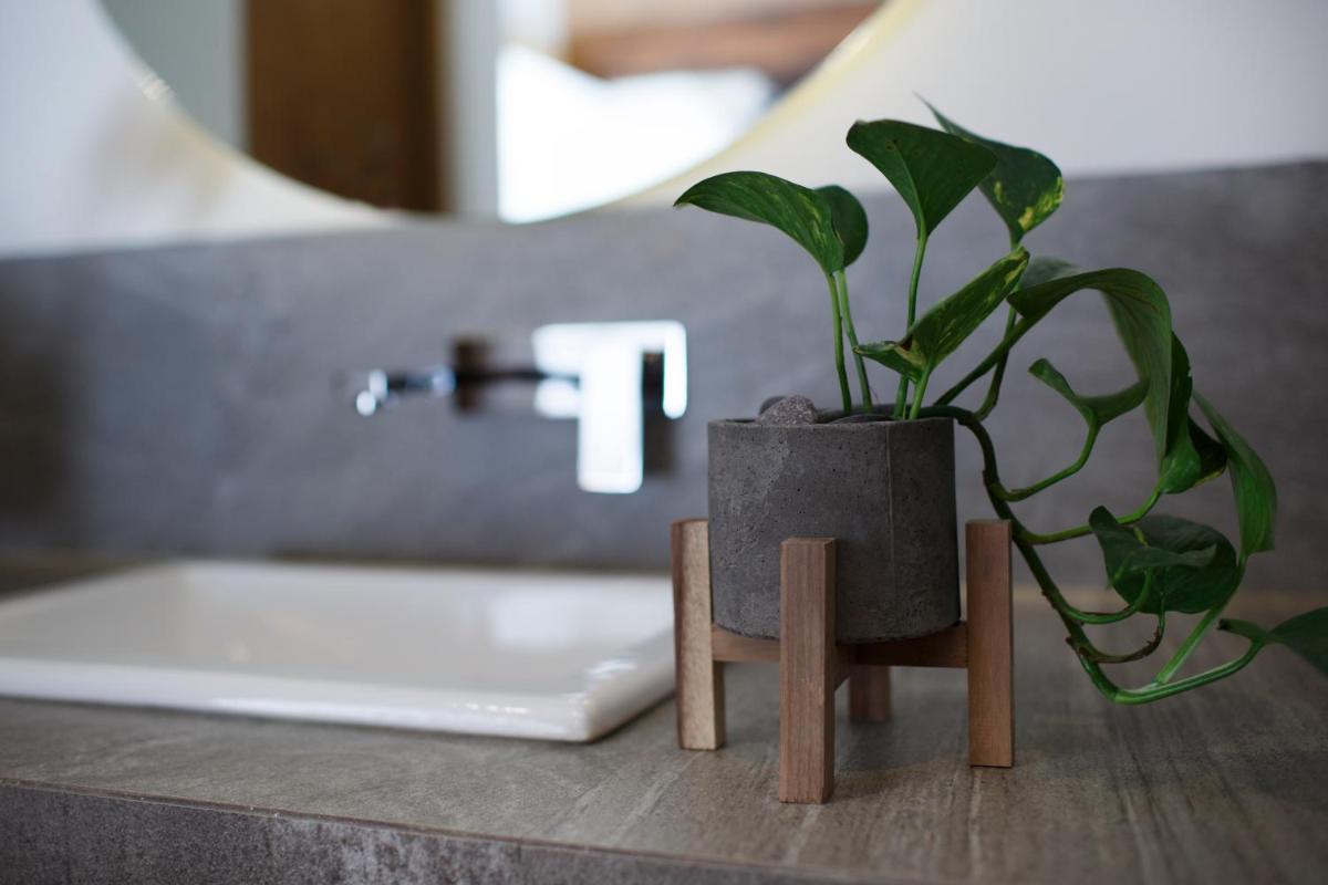 Photo - Maja Hotel Boutique