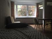 Big apartment in the greenest area of Kraków