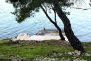 Seaside apartments with a swimming pool Okrug Donji Ciovo 5244