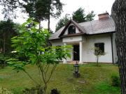Dom w sosnowym lesie