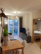 Apartament Jelonek Izerski Apartamenty 5d