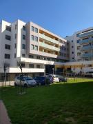 Apartament FALAMiodowy Dom