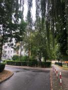 Duże mieszkanie w zielonej okolicy 6 km od Rynku