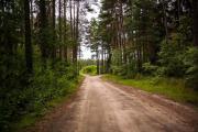 Agroturystyka na wsi w borach tucholskich