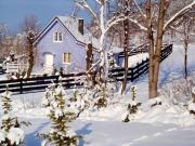 Holiday Home Niebieski