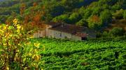 La Source Ardèche Chambres DHôtes